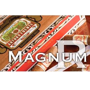 Magnum R